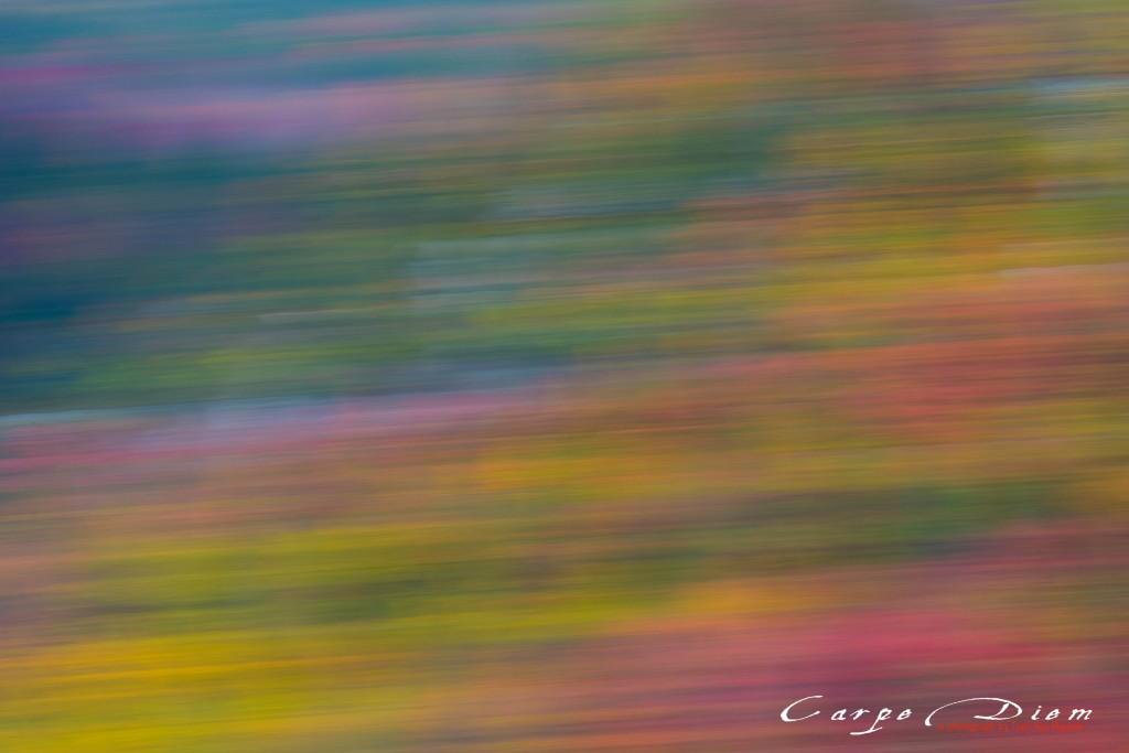 Autumn Impressionalism, Blackwater, Blackwater Falls State Park, WV