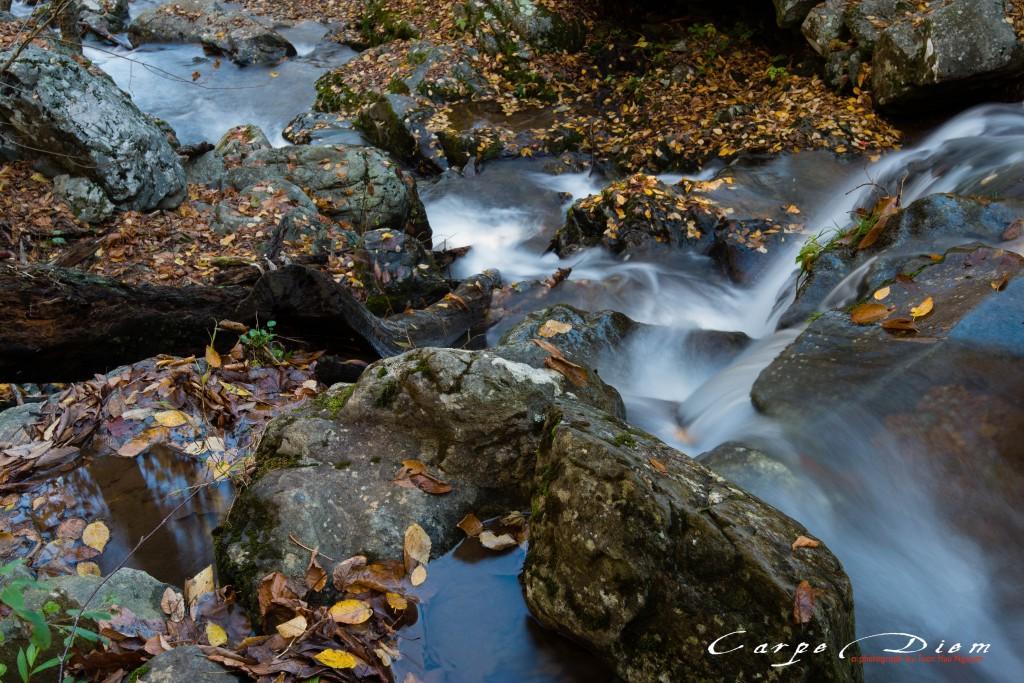 Dark Hollow Falls, Skyline Drive, Virginia, USA