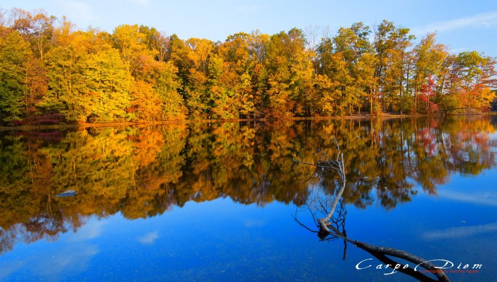 Sớm mai mùa Thu, Burke Lake, Burke, Virginia
