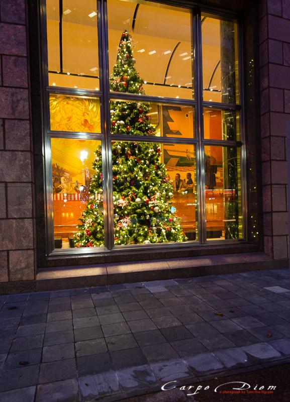 Chút Giáng Sinh bên ô cửa, Charlotte, NC