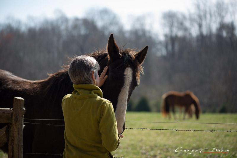 Con ngựa va chủ nhân