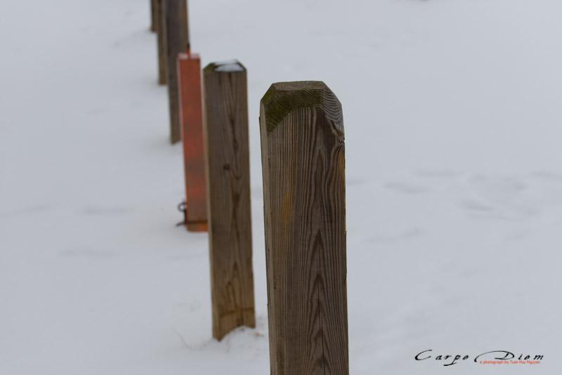 Tuyết phủ